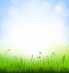 Background with grass border vector