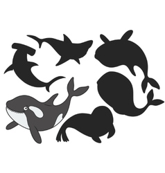 Cartoon killer whale vector