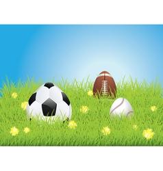 Egg Shaped Sport Balls3 vector image vector image