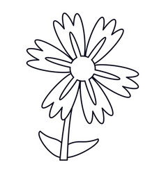 Lily flower natural outline vector