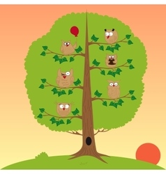 owls sitting in a tree sunset funny owl vector image vector image