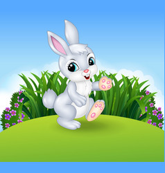 Cartoon little bunny walking in the jungle vector image