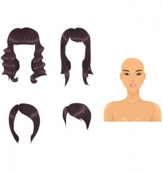 asian hair vector image vector image