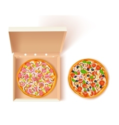 Pizza box composition vector
