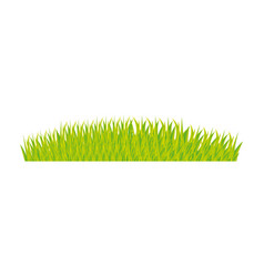 Color background with green grass vector