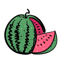 Cartoon image of watermelon icon summer symbol vector