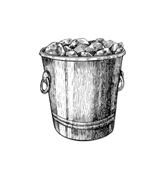 Ice bucket hand drawn isolated vector