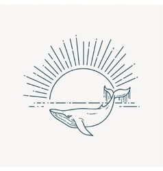Modern flat linear with Whale vector image