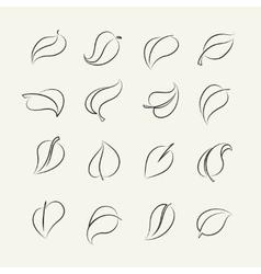 Outline sketch leaf set vector image