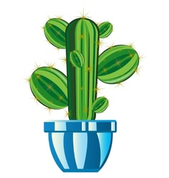 Cactus in pot vector