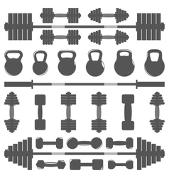 A set of equipment for the gym vector