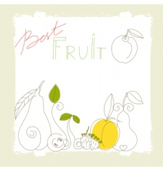 best fruit vector image