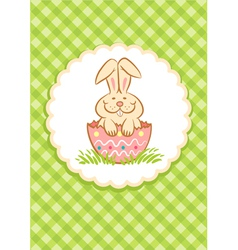Easter rabbit green vector