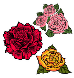 Flower set with redorange and pink roses vector