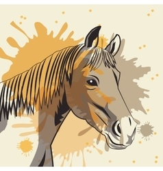 Horse icon Animal and art design graphic vector image