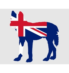 Australian dingo vector