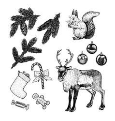 hand drawn christmas set new year vector image vector image
