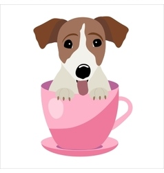 Jack Russell Terrier in pink teacup vector image
