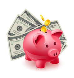 moneybox - pig and dollars on white vector image vector image