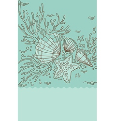 Sea shell and coral vector