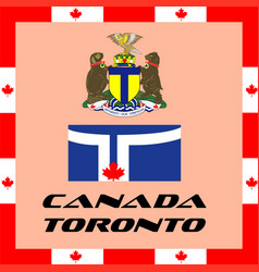 Official government elements of canada - toronto vector