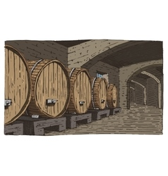 Wine barrels in cellar vintage old looking vector
