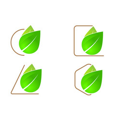 Green leaf logo icon vector