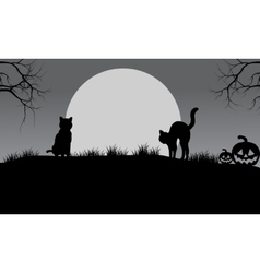 Halloween cat silhouette and moon vector