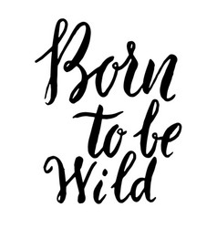 born to be wild hand drawn lettering phrase vector image