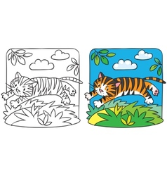 Little tiger coloring book vector image vector image