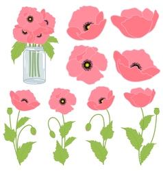 Pink Poppies vector image vector image
