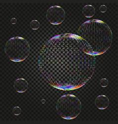 soap water bubbles on dark backdrop vector image