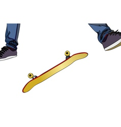 Evolutions in skateboard vector