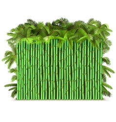 Green bamboo fence with palm vector