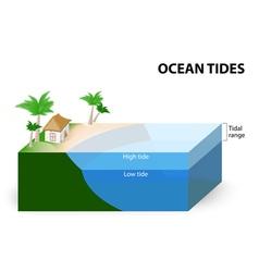 Ocean tides vector