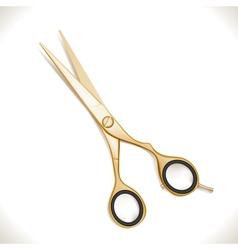 Golden Scissors vector image vector image