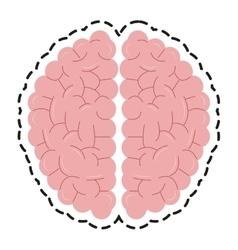 Isolated brain design vector