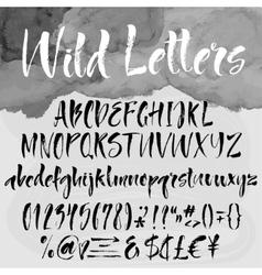 Brush lettering alphabetical set vector image