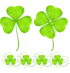 St Patrick's Day clover vector image