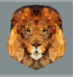 lion head low vector image vector image