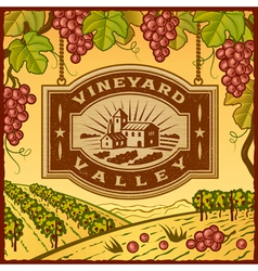 Vineyard valley vector