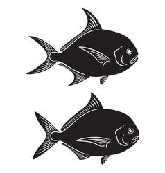 Pomfret fish vector