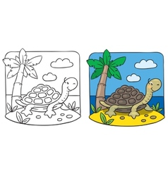 Little turtle coloring book vector image vector image