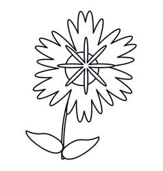 Magnolia flower natural outline vector
