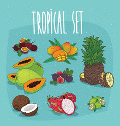 set of isolated organic tropical fruit cliparts vector image
