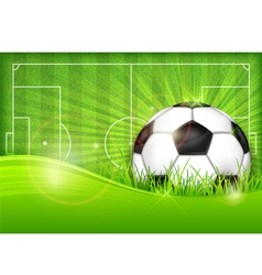 Playing field ball green background ball grass vector