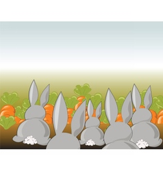 Bunny rabbits in a field of carrots vector