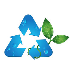 Recycling symbol and green leaves vector
