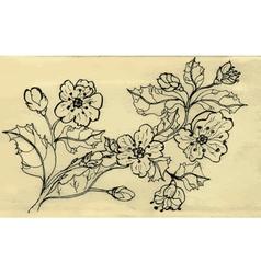 Sakura Doodle vector image
