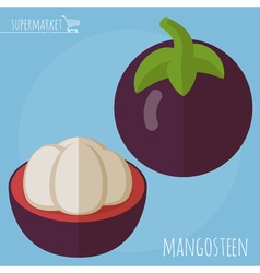 Flat design mangosteen icon vector
